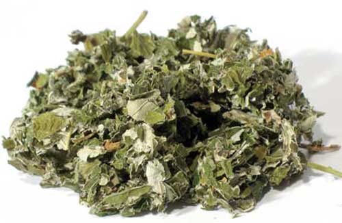 Find out about the many raspberry leaf tea benefits and how to use this pregnancy super-food!